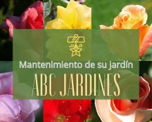 Permítanos encargarse del mantenimiento de su jardín en Alicante
